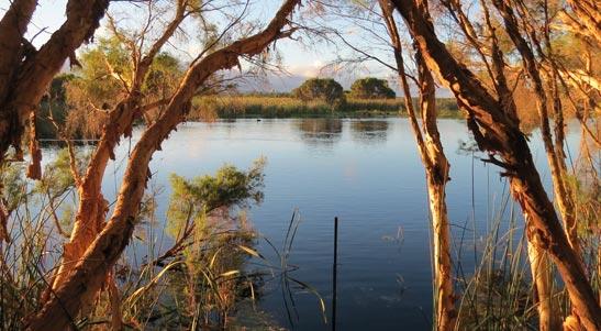 Wetlands in Wanneroo