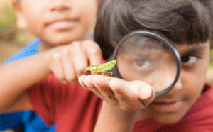 Child looking at insect through magnifying glass