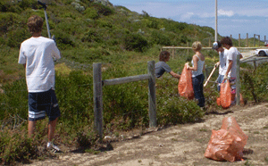People clearing litter from bushland