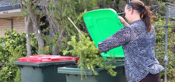 Green lid bin being filled