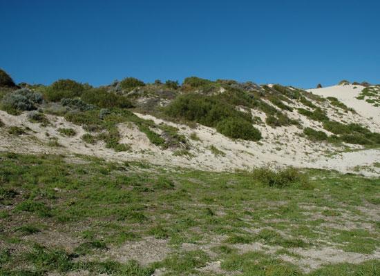 South mindarie trail