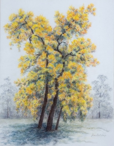 Christmas Trees, Alma Hotchkin. Acquired 1994, Pastels
